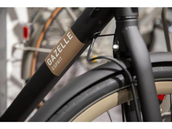 Gazelle Esprit T7 HFB Dames
