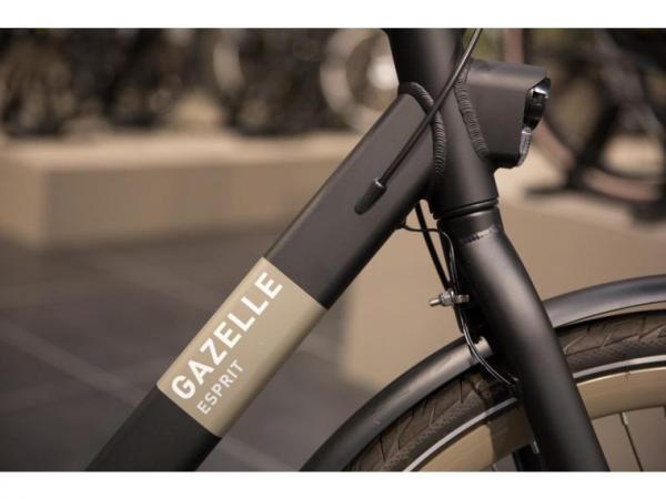 Gazelle Esprit C3 Heren