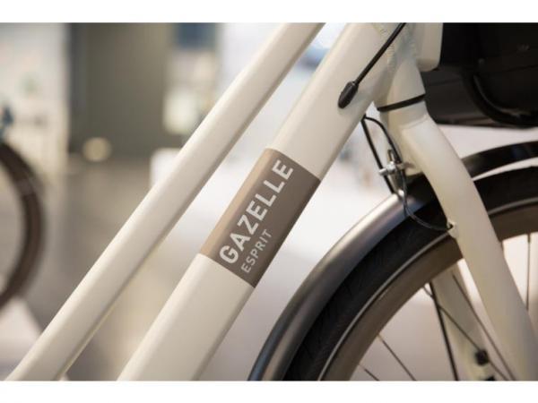 Gazelle Esprit C7 Heren