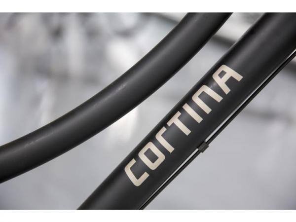 Cortina U1 N3 Dames