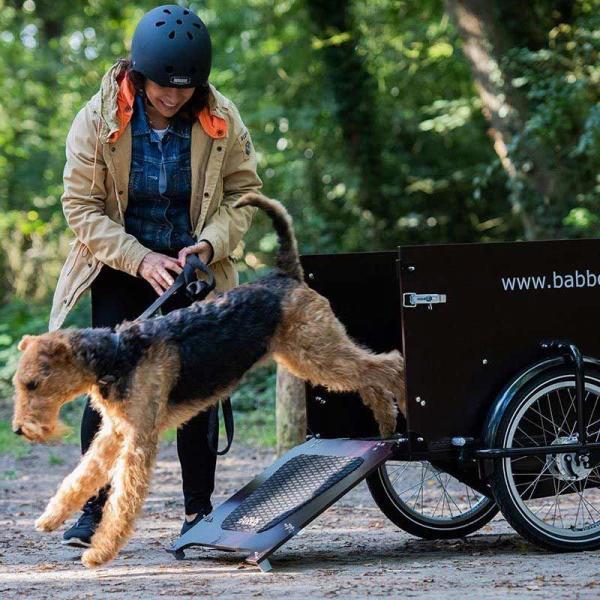 Babboe Dog-E Bakfiets