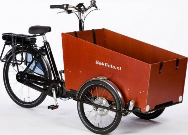 Bakfiets.nl Cargotrike Classic Wide Steps kopen